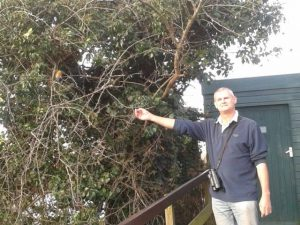 Alan Harris with Alan the Robin at the Draper Hide