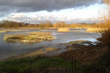 No. 1 Lagoon,  Jan 2014.