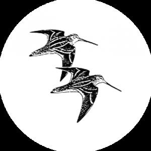 RMRG logo
