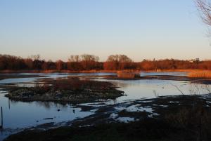 No. 1 Lagoon on RSPB reserve